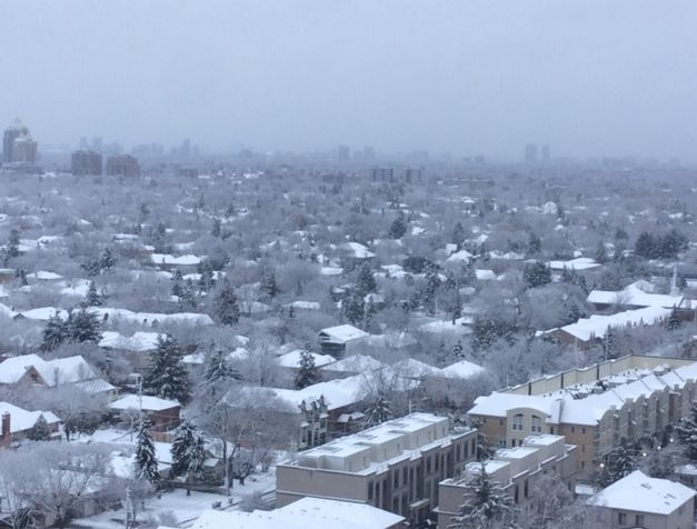 聽友分享多倫多的雪景