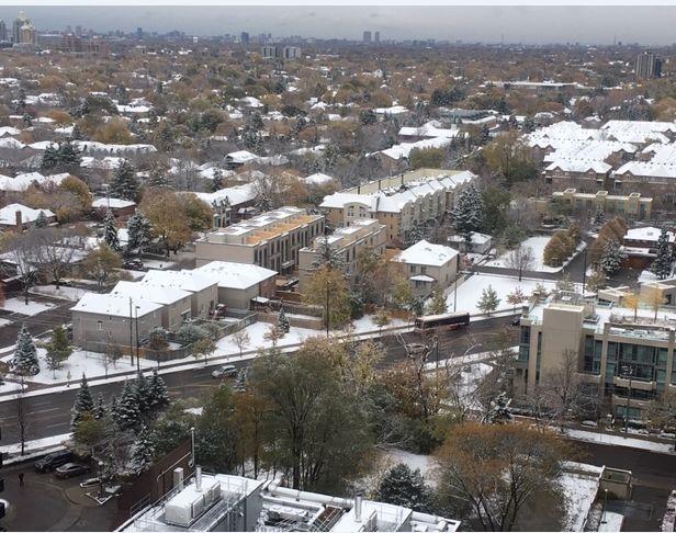 多倫多今年的第一場雪