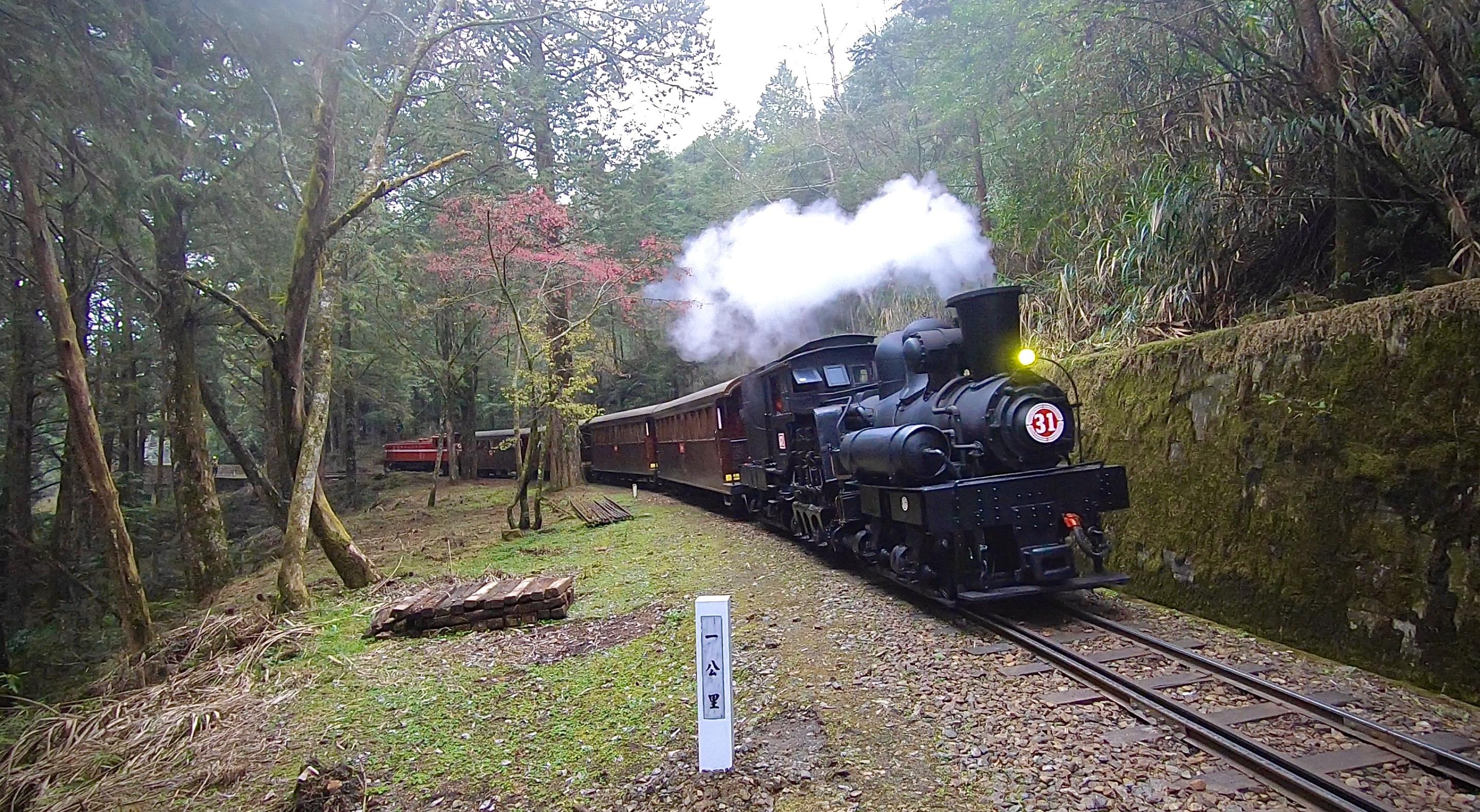 全臺唯一高山鐵道楓紅  林鐵《SL-31蒸汽火車.楓華再現》主題列車