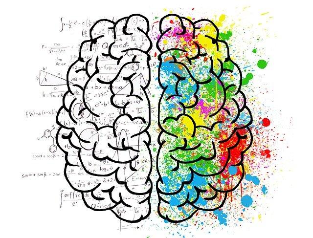 那顆與眾不同的青春大腦