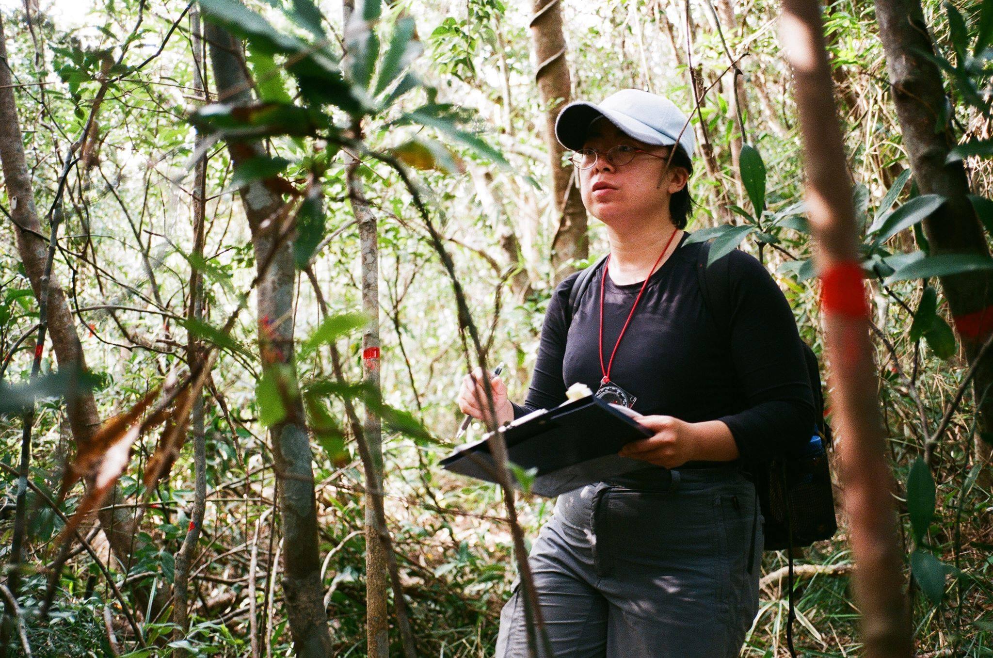 台灣的山林生活與森林調查