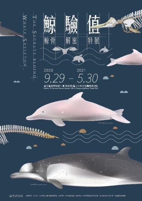 鯨驗值-鯨骨解密特展