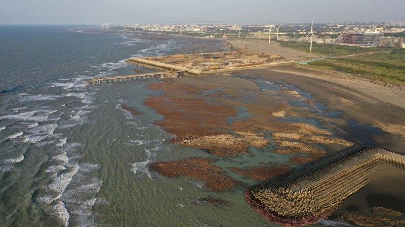 藻礁公投爭議