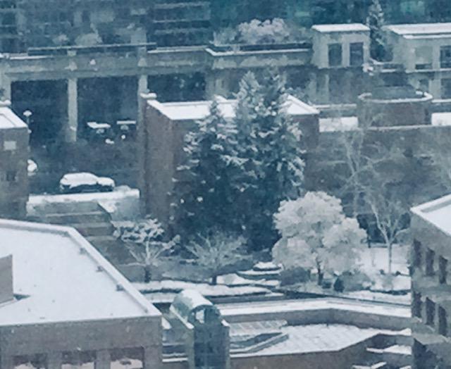 加拿大四月飛雪 是不是又有禍事?