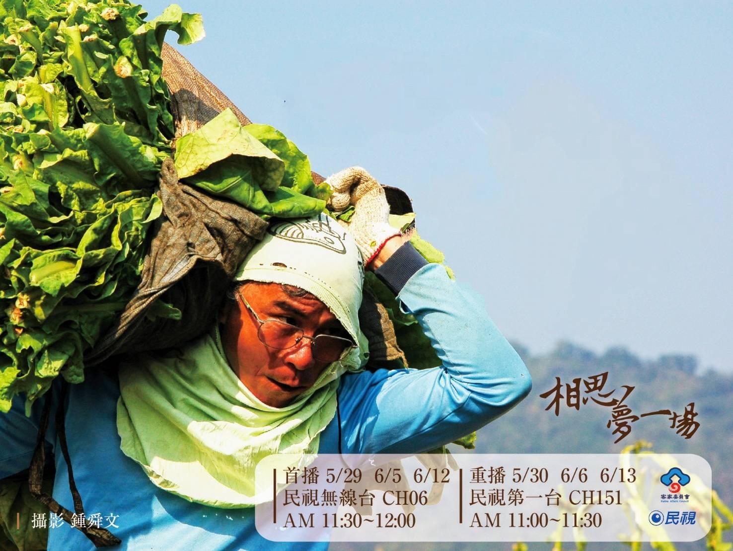 「相思一場夢--台灣菸業與客家」紀錄片,記錄台灣