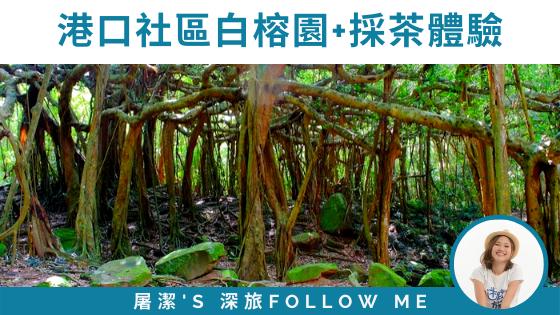 【屏東旅遊】港口社區的白榕園+採茶體驗