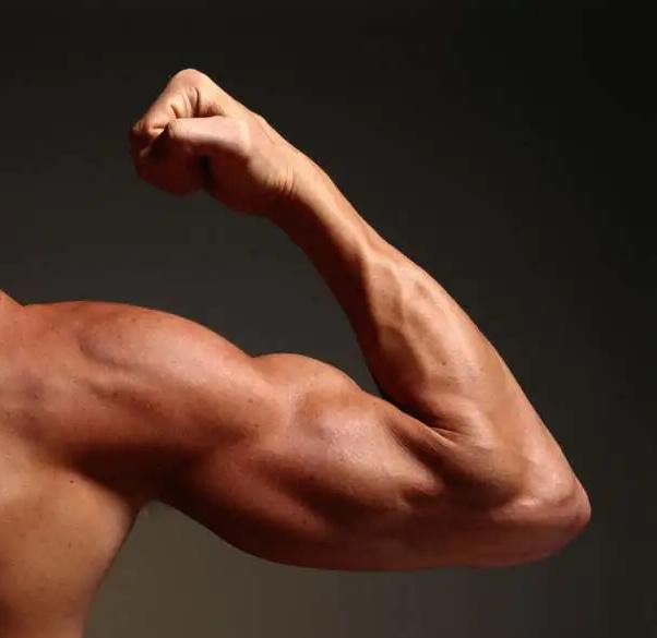 在家健身練肌肉 解封後靚靚見人