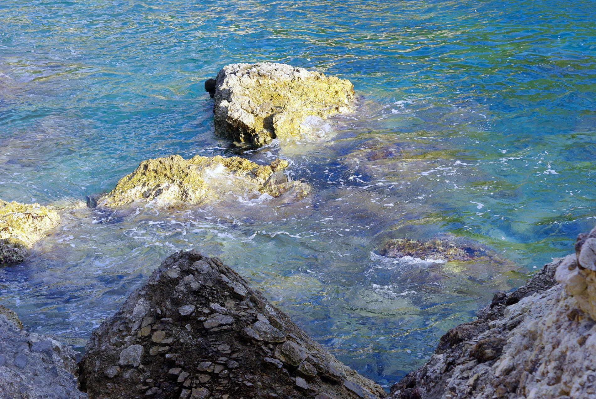 小暑2 夏日海洋 飛魚的故事