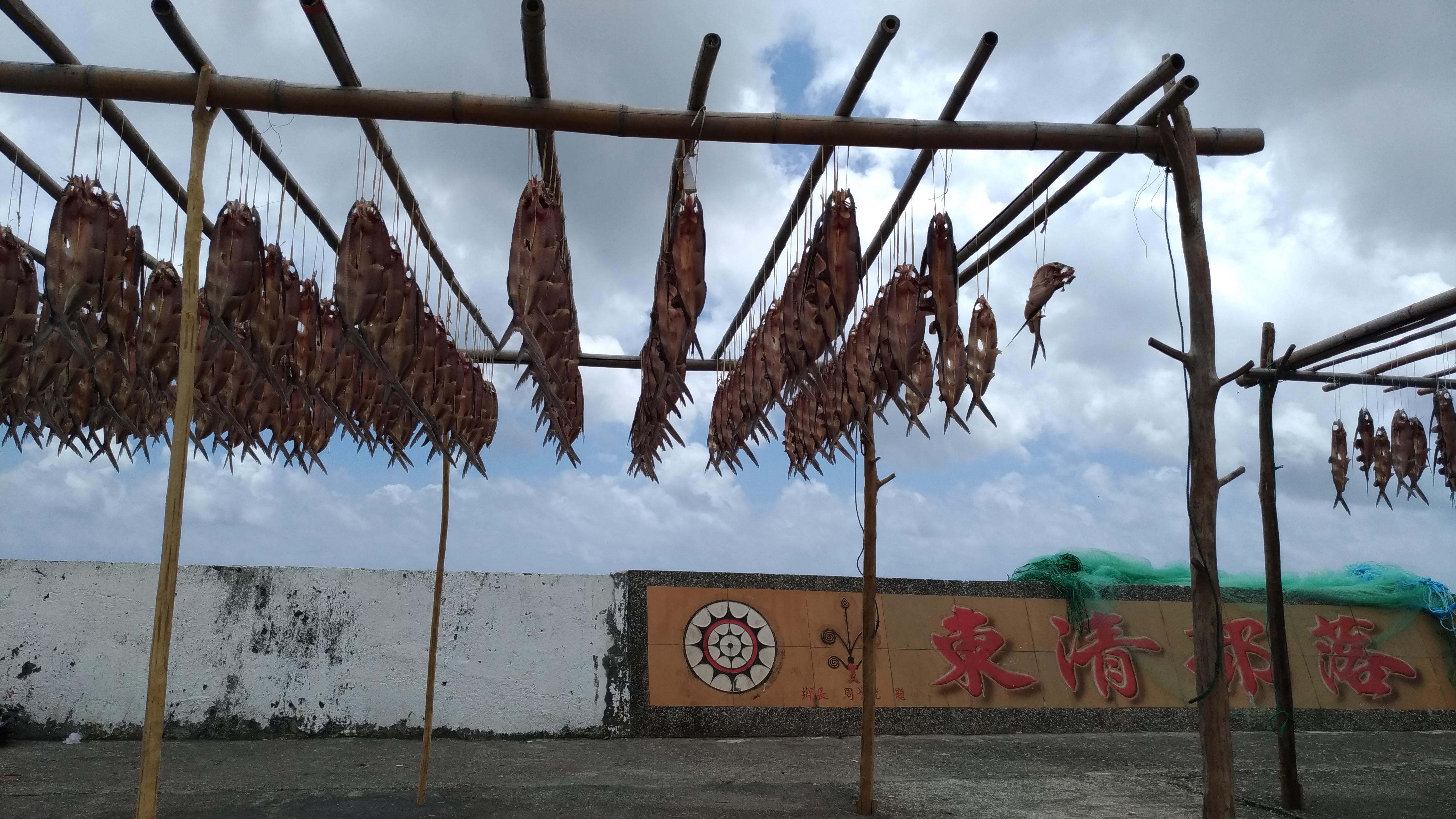 魚與黑道:追蹤暴力團的大金脈「盜漁經濟」