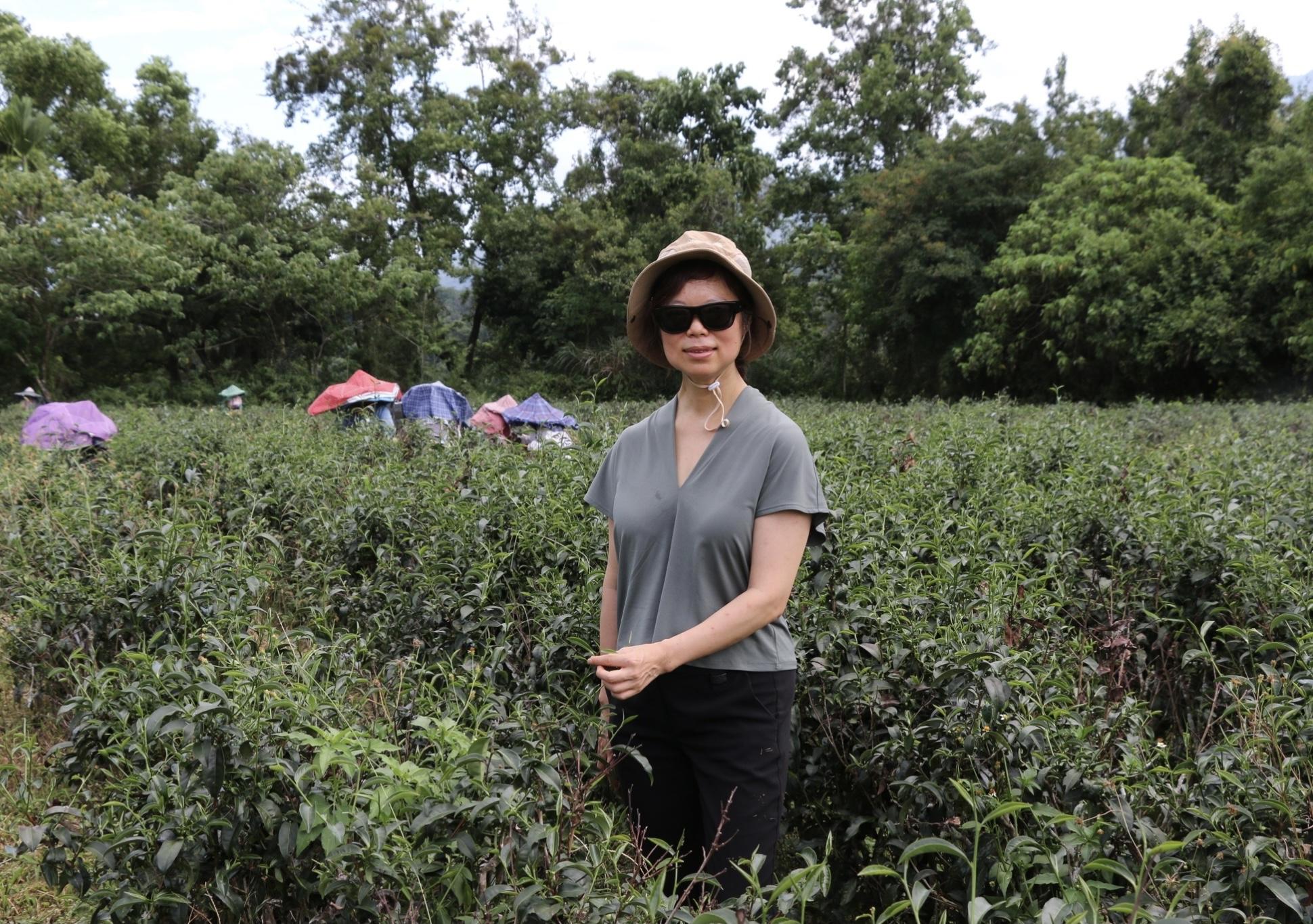 農業創新與小農推廣