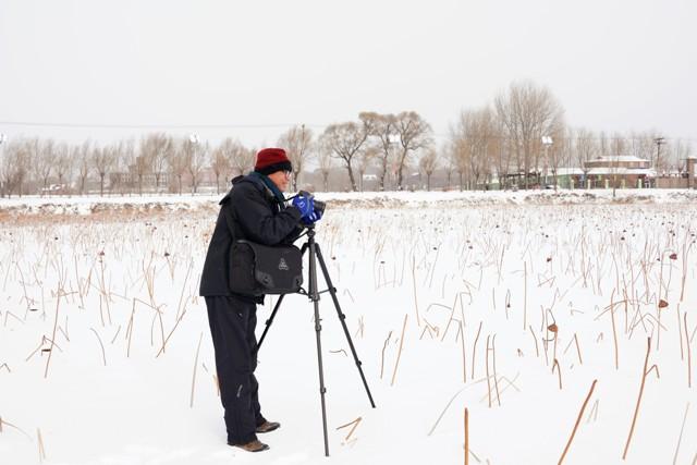 資深攝影家吳景騰用荷花說生命故事