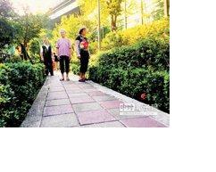 三重區維德里「花草步道」