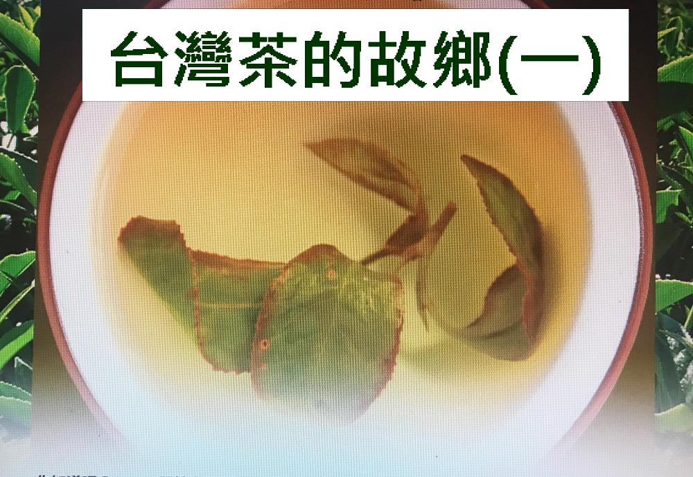 台灣茶的故鄉(一)