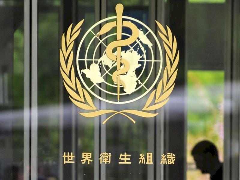 全球逾3億人患肝炎 WHO籲合作應對