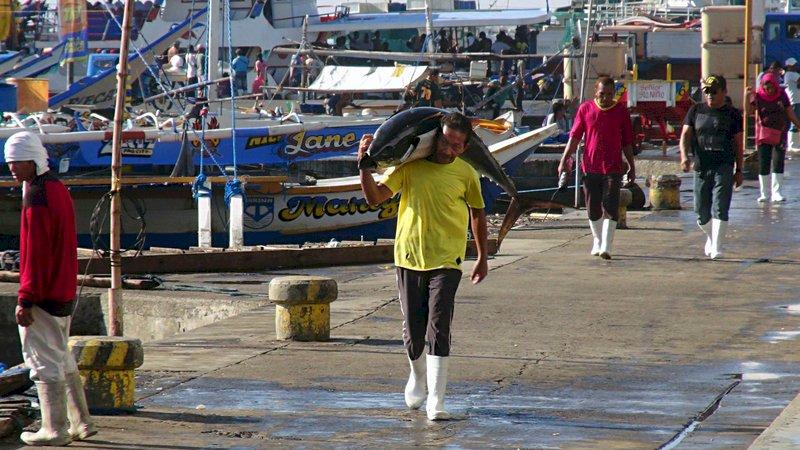 菲國鮪魚之鄉 台商南向新亮點