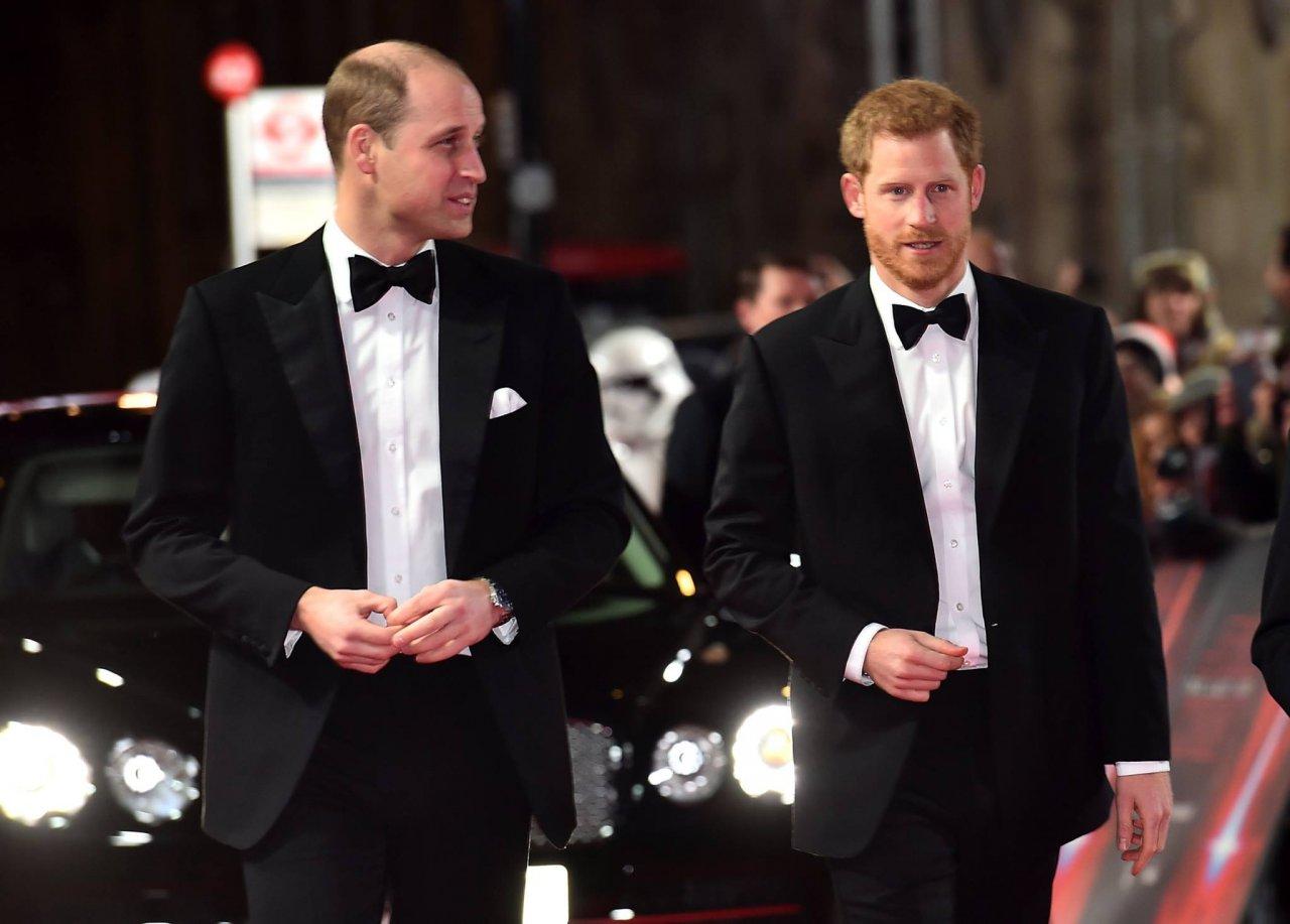 新書爆料:哈利王子不滿哥哥威廉勢利眼看待梅根