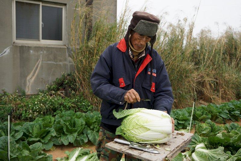 退休仍須工作 南韓貧窮老人率居OECD之首