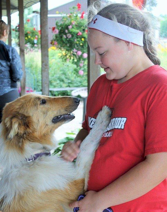 美大學研究:狗能夠感覺到主人的悲傷