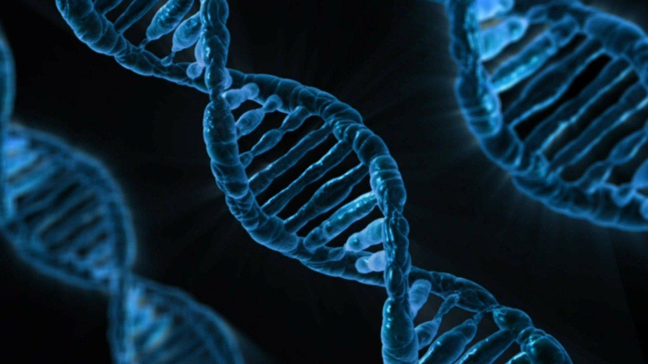 澳洲智庫:中國為政治監控 大量採集DNA樣本