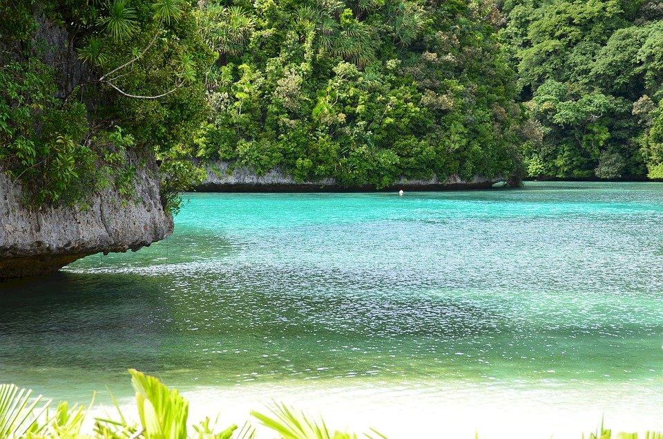 保護珊瑚礁 帛琉2020禁用含有害成份防曬品