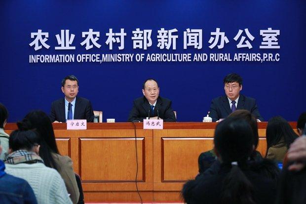 非洲豬瘟蔓延 中國官方堅稱:疫情總體可控