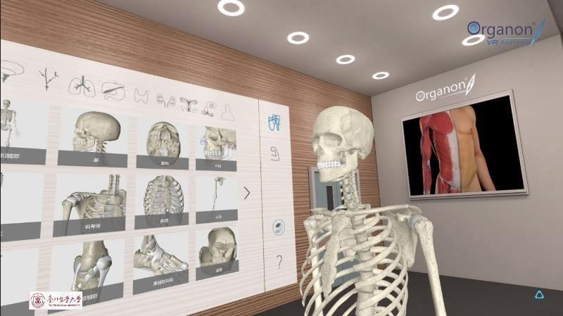 虛實整合 北醫攜手HTC建立全球最大VR解剖學教室