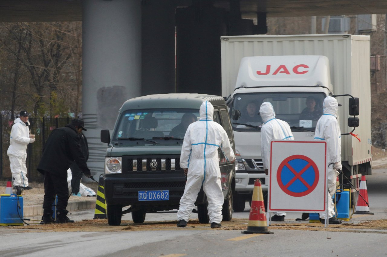 河北確認非洲豬瘟疫情 中國只剩3省區未感染