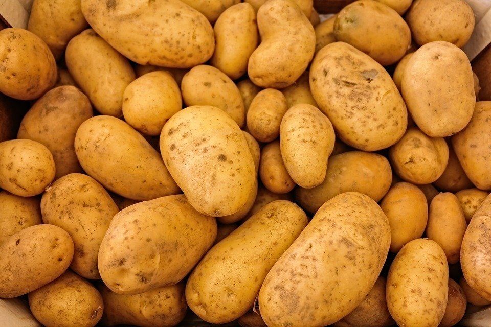 法國馬鈴薯藏一戰手榴彈 香港警方安全引爆