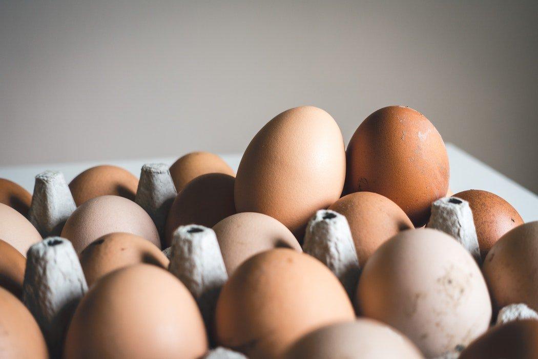 歐洲禽流感疫情升溫 雞蛋供應受衝擊