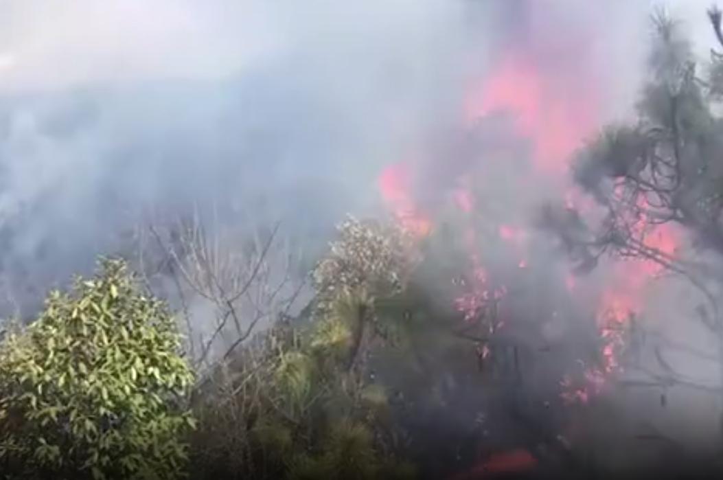 涼山森林火勢已獲控制 30具遺體送西昌