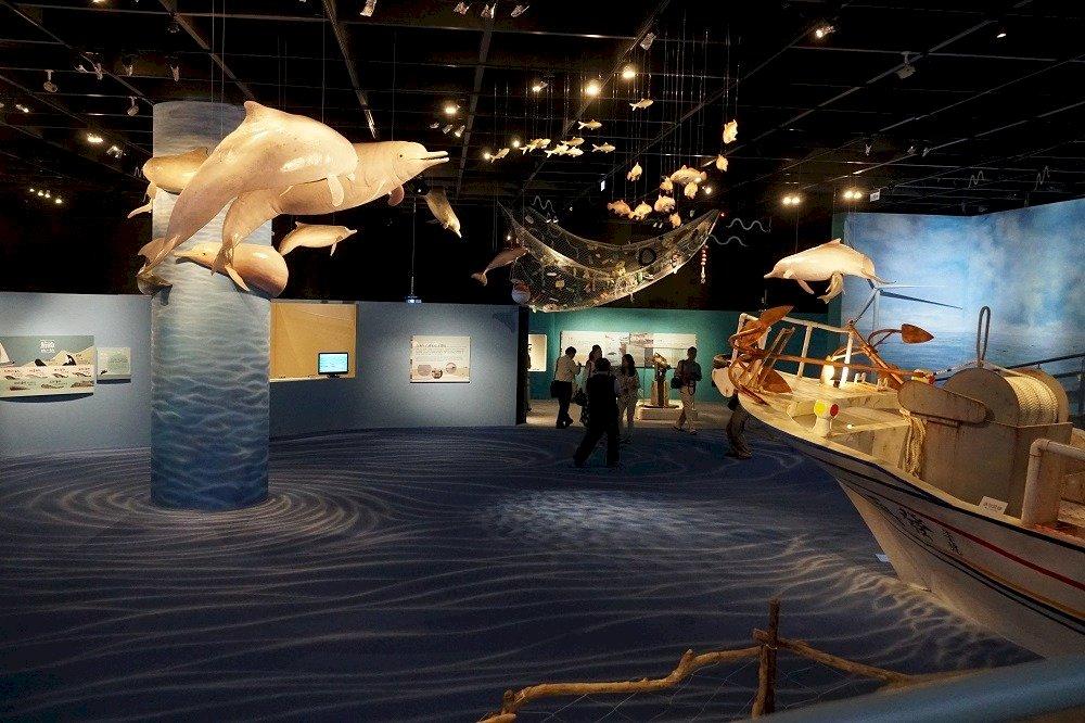台灣白海豚僅存50隻 科博館策展示警