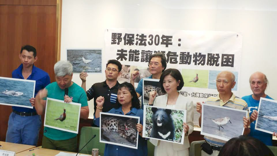 助瀕危動物脫困 動保團體籲修動保法將復育入法