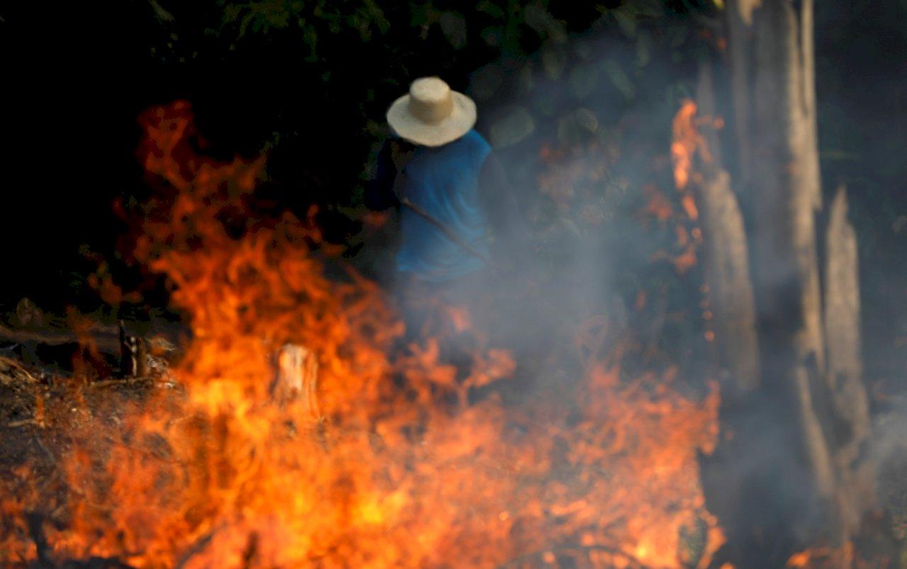 亞馬遜野火 國際名流分享照片錯誤百出
