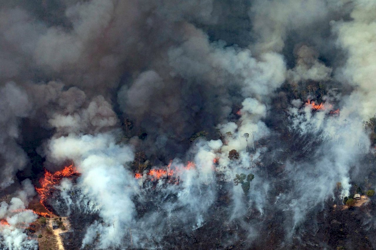 亞馬遜森林又增數百起野火 巴西出動軍機滅火