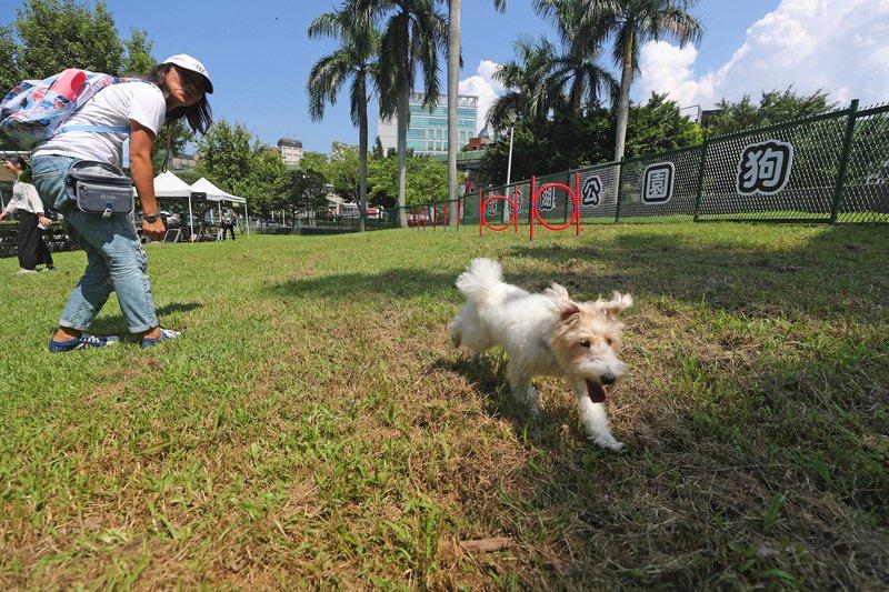 什麼人養什麼狗 研究:胖子容易養胖狗