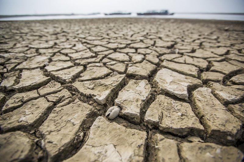 中國官媒:長江遇40年最嚴重乾旱