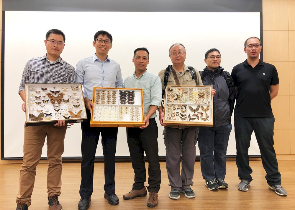 中研院用AI證實昆蟲色彩與海拔環境有關 登上國際期刊
