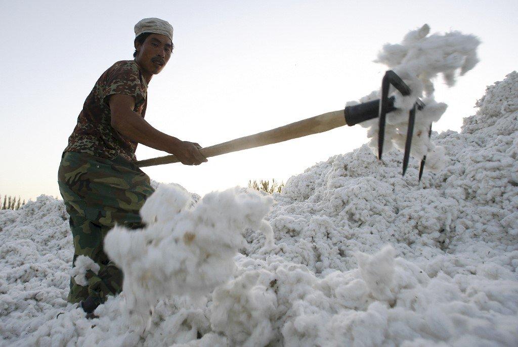 美國發布商業警示 勿與侵犯新疆人權中企合作