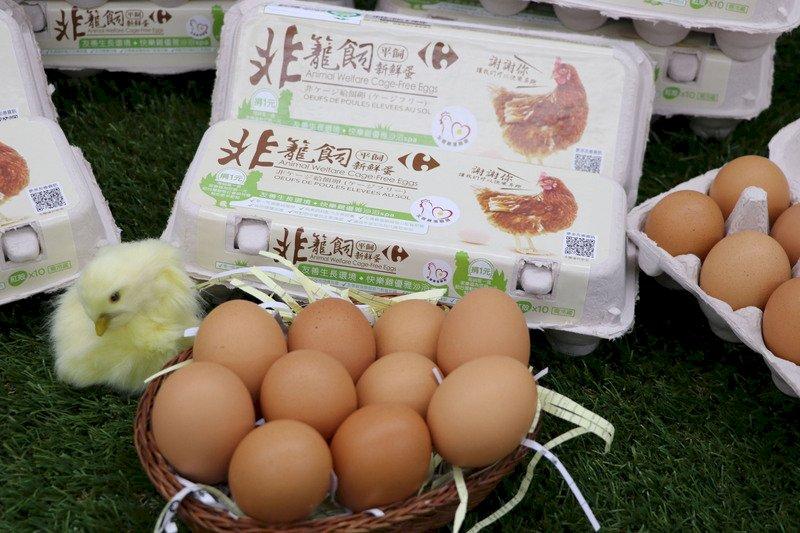 法式料理用台灣花材入菜 蛋與雞的生命故事