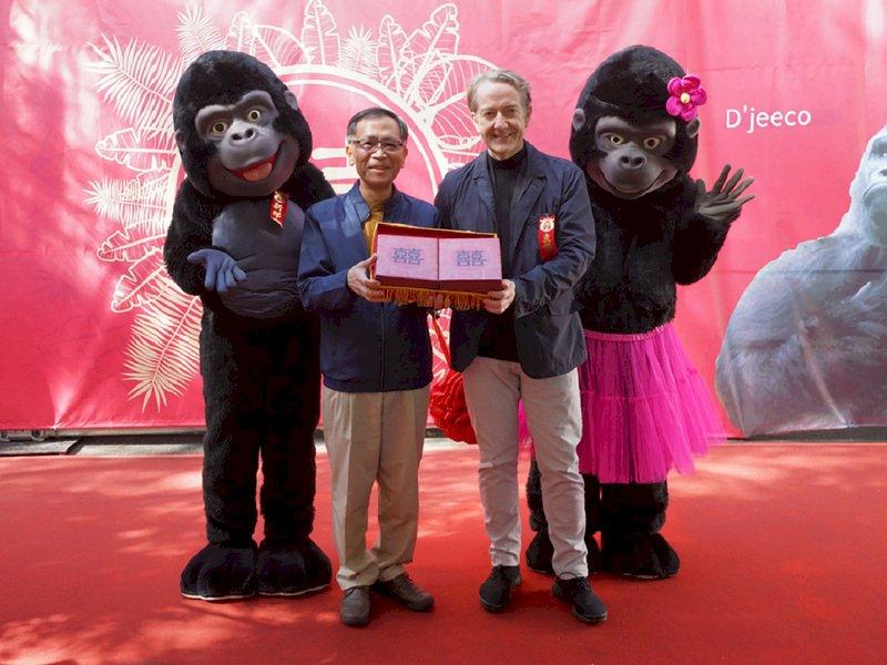 台北市立動物園8日為金剛猩猩舉辦婚禮,並邀請荷蘭貿易暨投資辦事處代表紀維德(右)、副市長蔡炳坤(左)觀禮,祝福金剛猩猩早生貴子、瓜瓞綿綿。(台北市動物園提供)