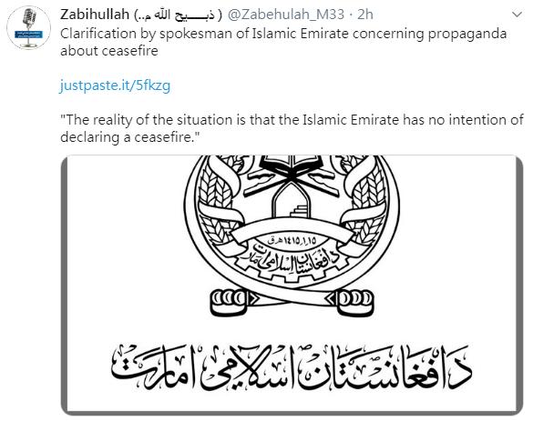 塔利班:在阿富汗沒有「停火計畫」