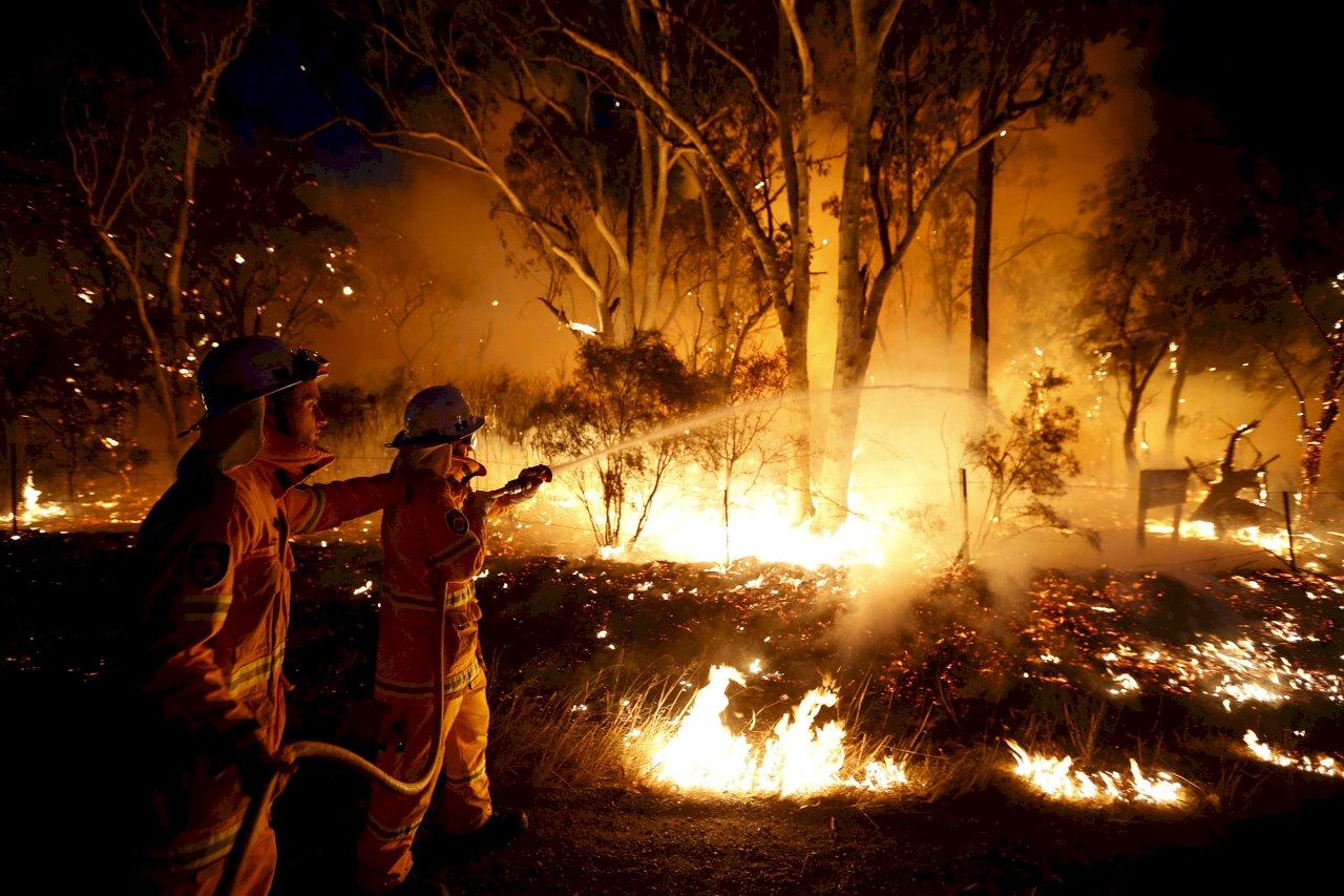澳洲野火再現 榮登世界遺產島嶼40%土地遭大火吞噬
