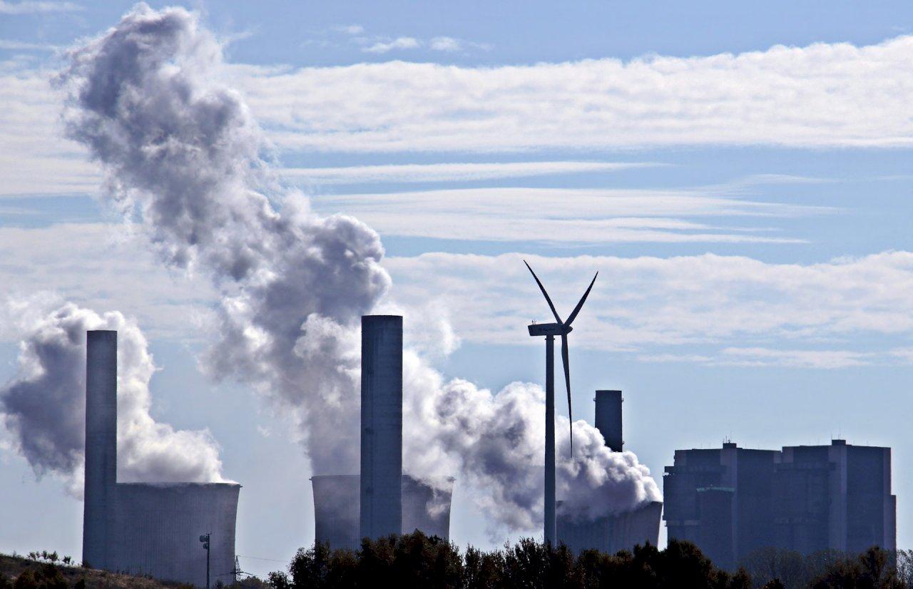 全球企業追求淨零碳排 碳補償或為一帖良方
