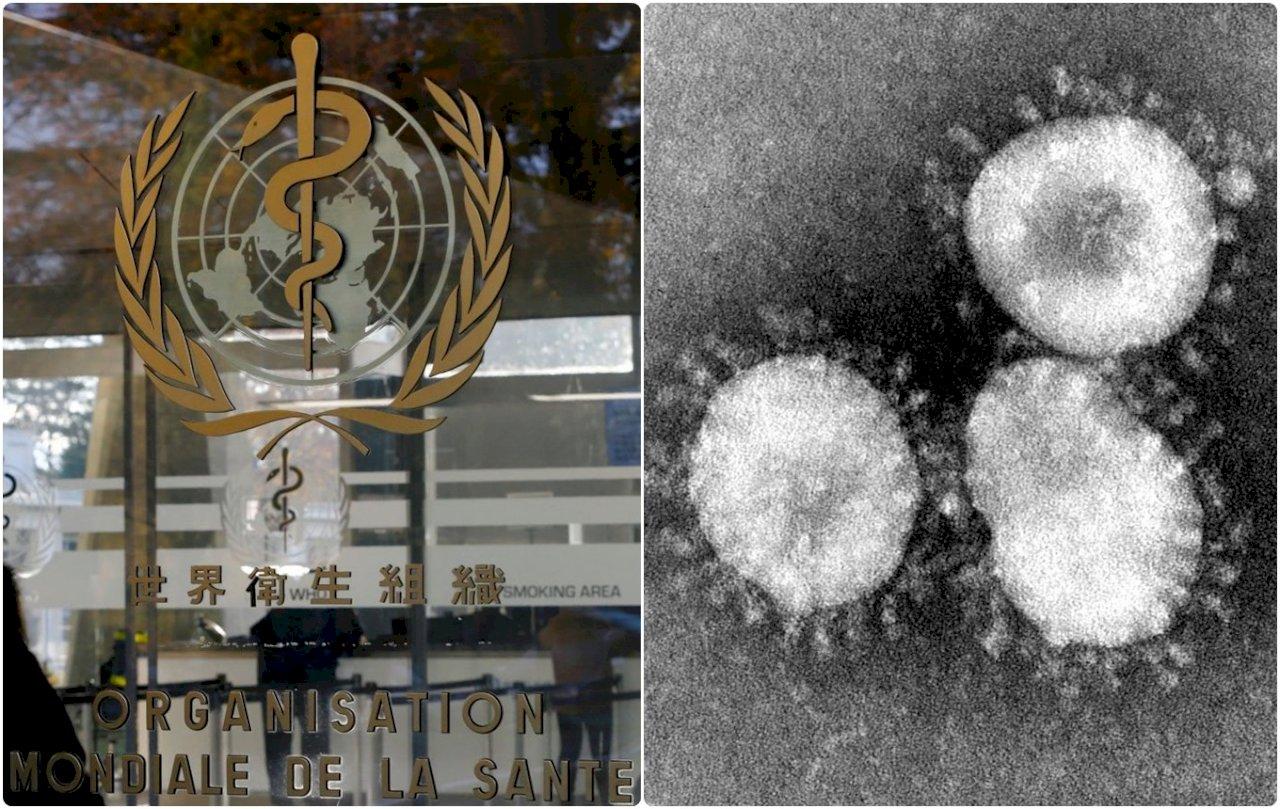越南首次發現武漢肺炎病例 確定病毒人傳人