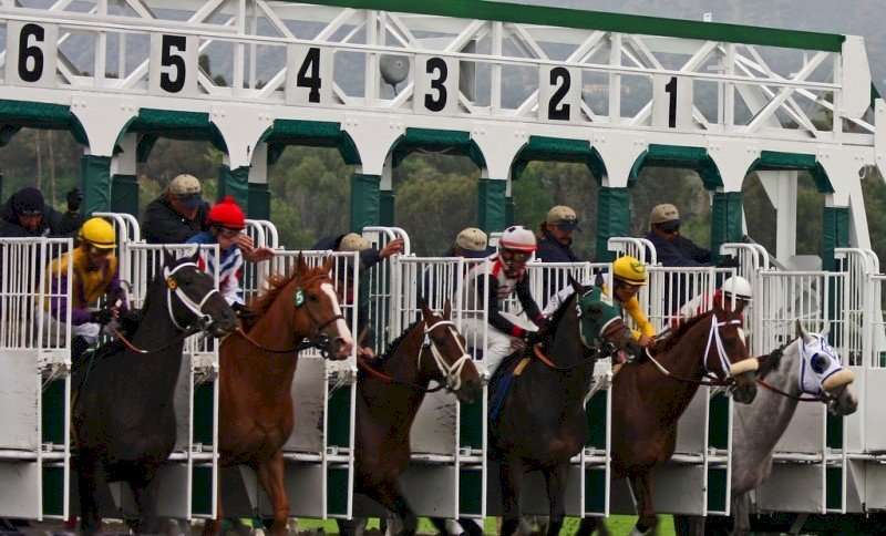 提升國際形象 沙國將舉辦全球最昂貴賽馬