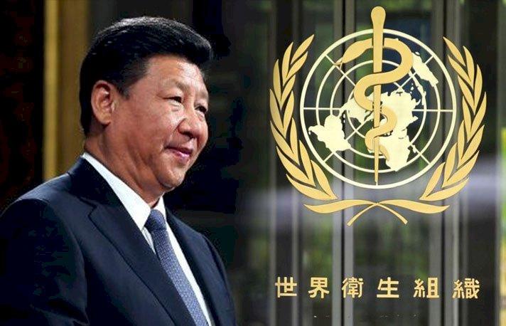 捧到心花兒開?中國願助疫情嚴重國家防疫 還考慮向WHO捐款