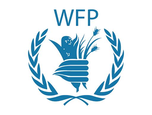 領取諾貝爾獎  WFP:饑餓大流行比COVID-19更糟