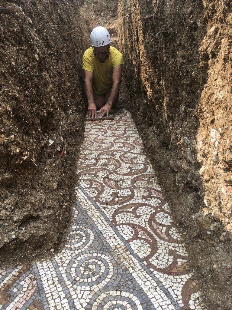 義北葡萄園挖出古羅馬遺址 馬賽克地板保存完美