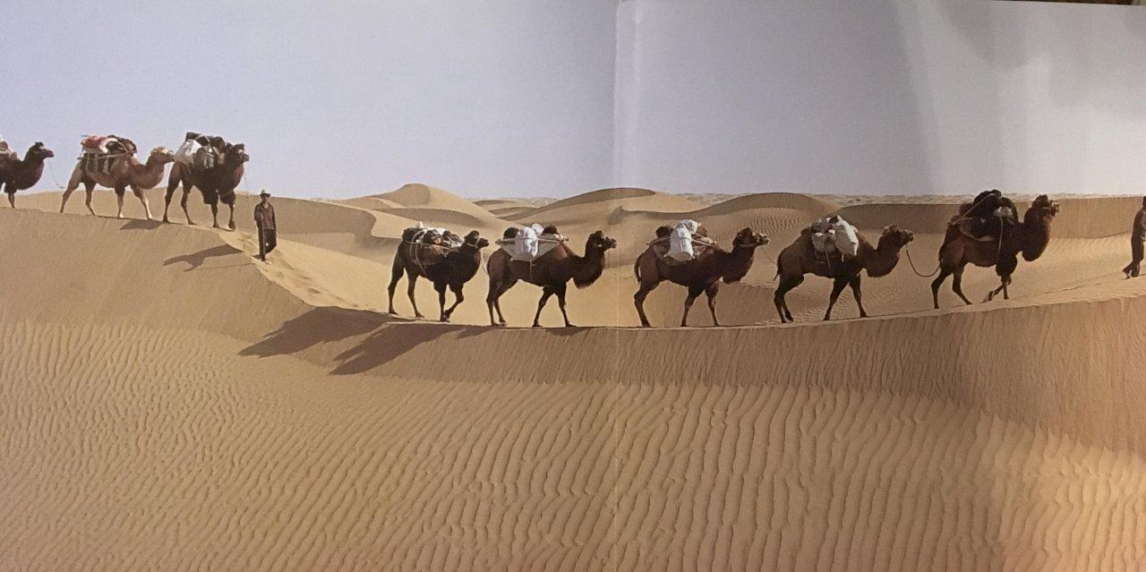 安華醫師:我眼中的新疆問題(六)西出陽關無故人:新疆自古以來是中國的領土?