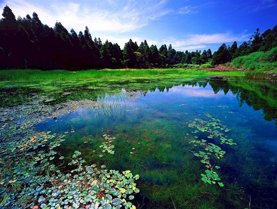 國家公園系列:陽明山國家公園,都會中尋找寧靜的淨土